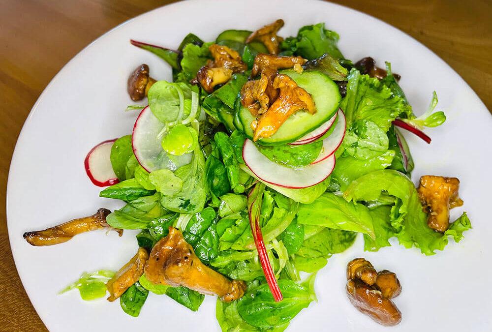 Salat mit frischen Pfifferlingen